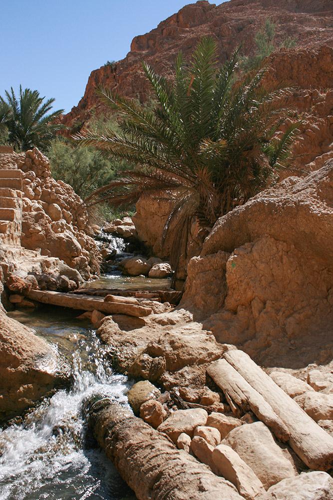 Chebika Wasserlauf