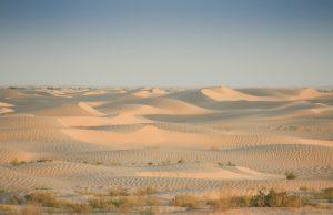 Douz - Wüste