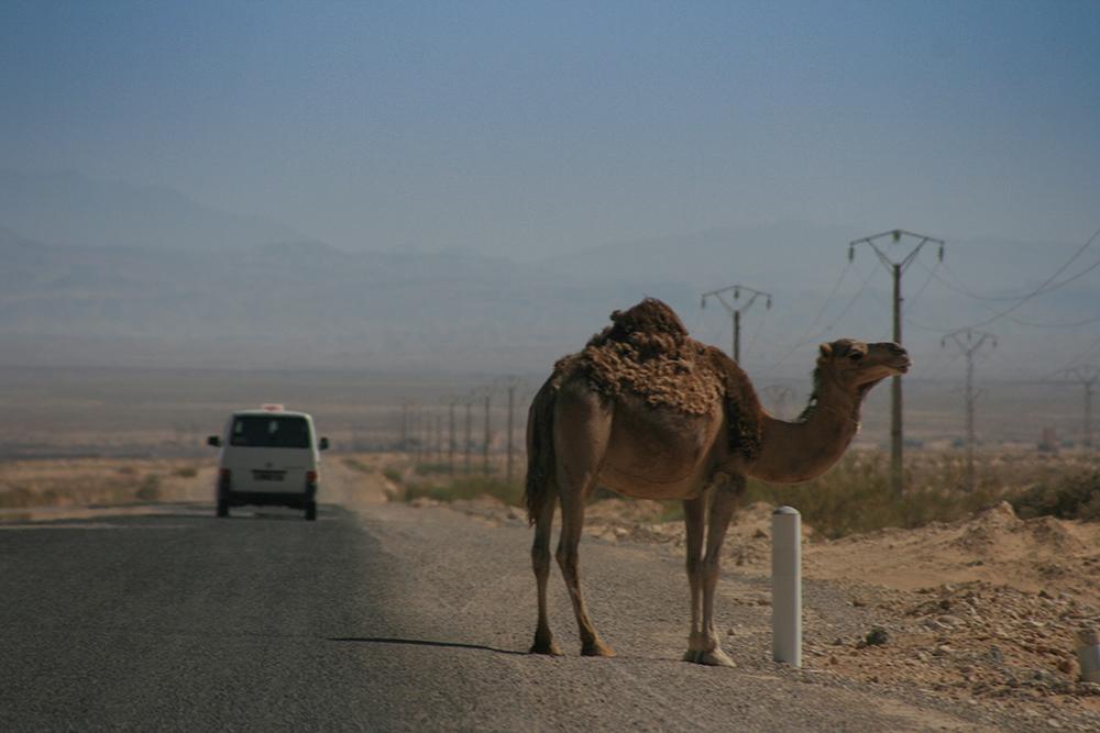 Straße Tunesien