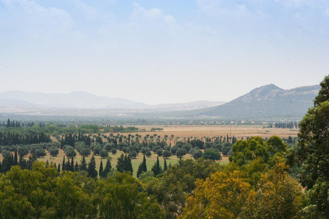 Enfidha Landschaft