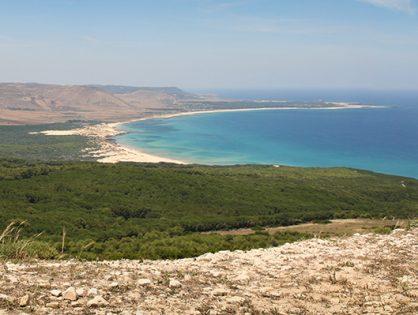 Tunesienkrankheit
